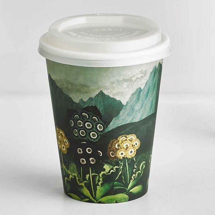 8oz Custom Logo Paper Coffee Cup
