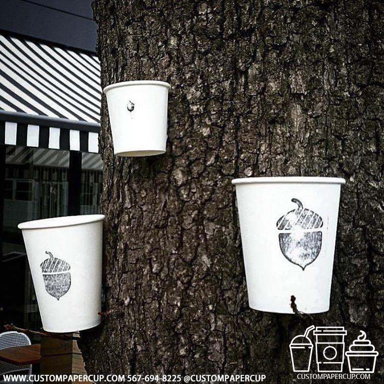 anchor tree idea nut custom printed paper coffee cups